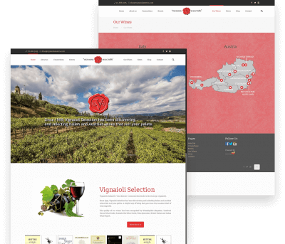 Website for Vignaioli Wine porfolio